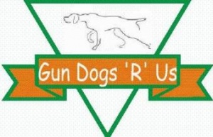 Gun Dogs R Us - Gun Dog Training