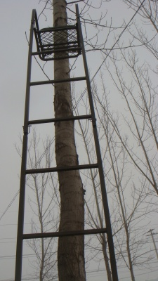 One-man tree stand/ladder stand