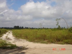 20 Acres Hunting Land Loaded with Wildlife